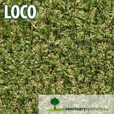 Sanctuary Loco Artificial Grass