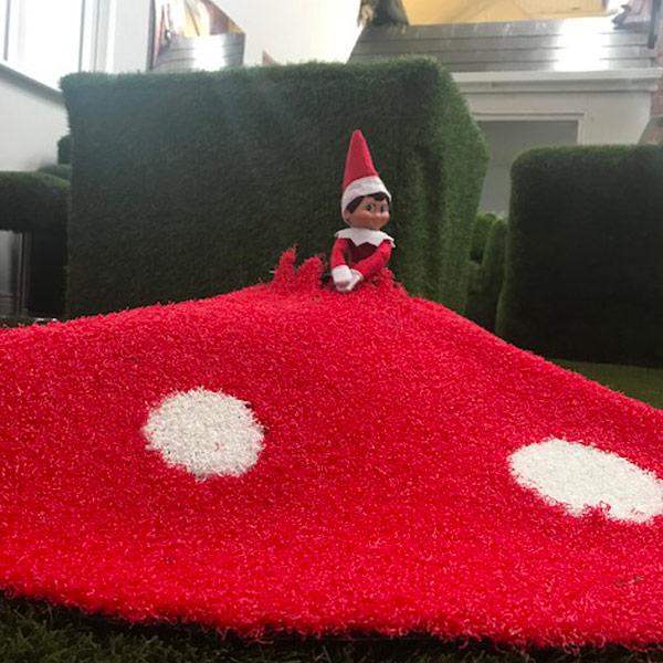 Christmas Toadstool Tree Skirt