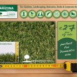 Sanctuary Arizona Artificial grass lawn