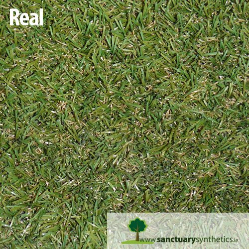 Sanctuary REAL grass